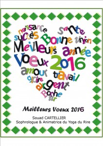 carte voeux Nvel An 2016